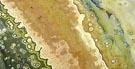 jaspe ocean