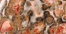 jaspe léopard.jpg